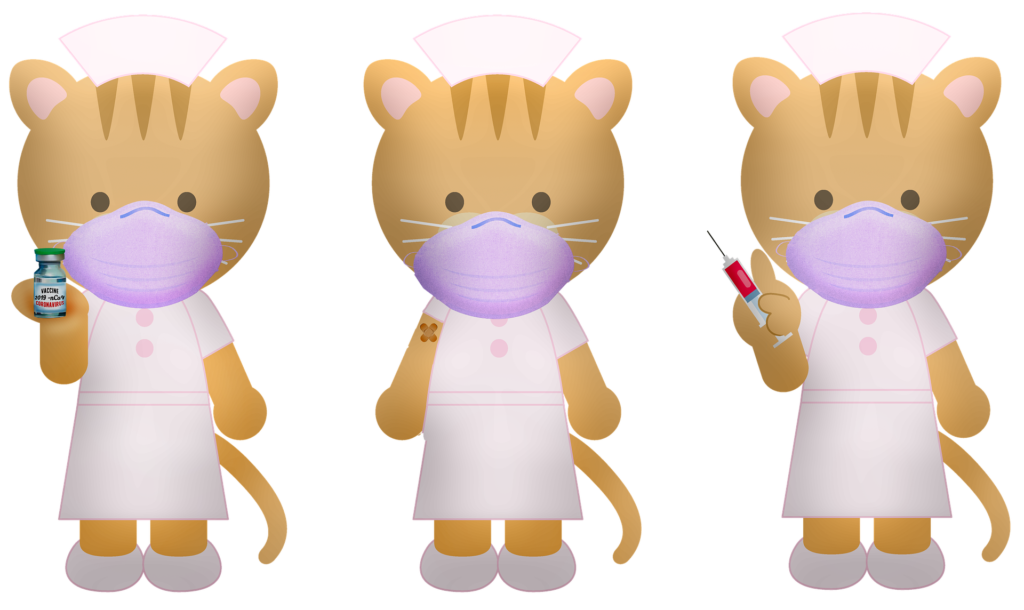 3 cats wearing a lilac colored mask, white dress and two pink buttons.  First cat holding the vaccine.  Middle cat has the band-aid on their arm from the injection.  Third cat holding the needle. How to have a Covid friendly event.